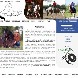 Tracy Porter Website Redesign by Erica Franz @ Fat Pony