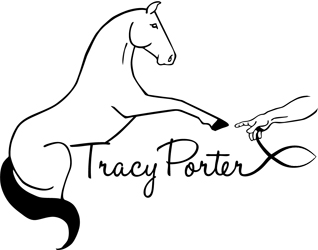 Tracy Porter Logo by Erica Franz @ Fat Pony