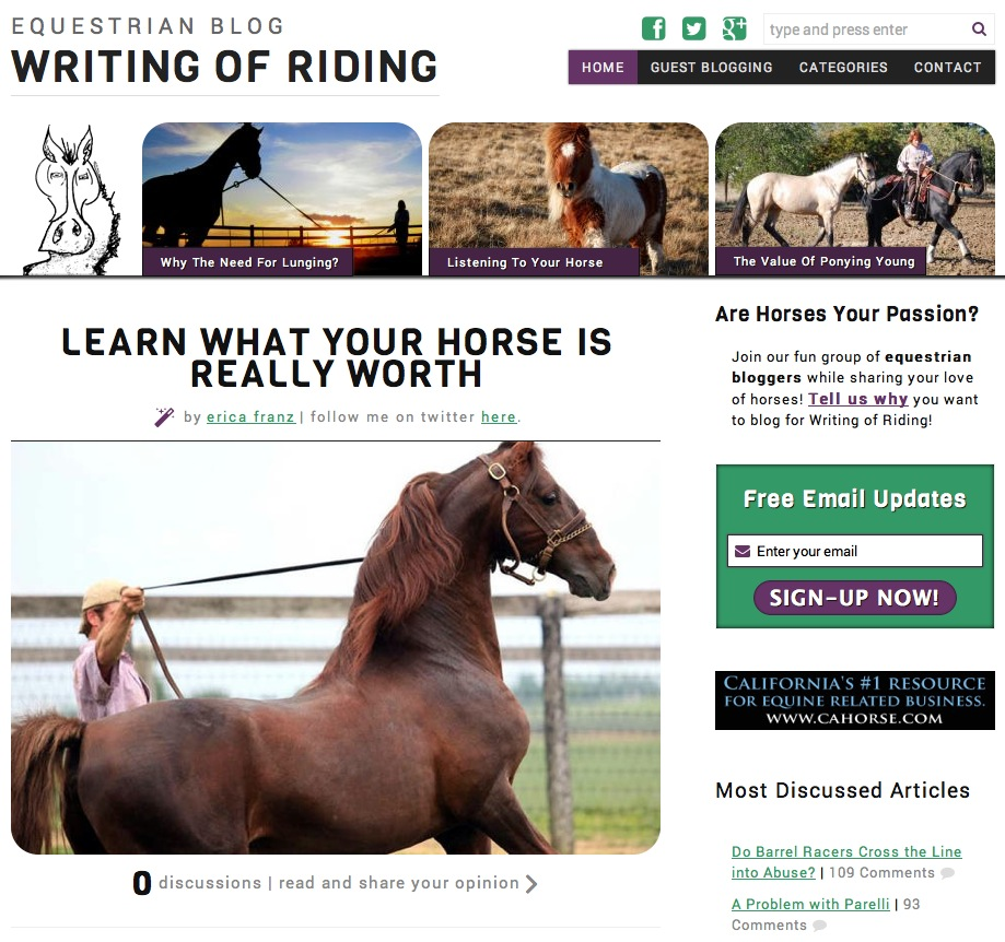 Writing of Riding Equestrian Blog website design by Erica Franz @ Fat Pony